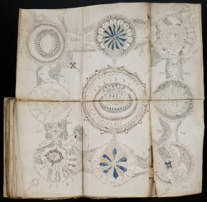 A page from the Voynich Manuscript. Photo from Elusive Muse via Flickr.